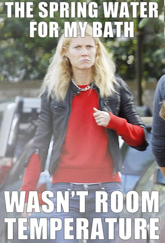 Gwyneth-Paltrow-Grumpy-Face-Meme-2